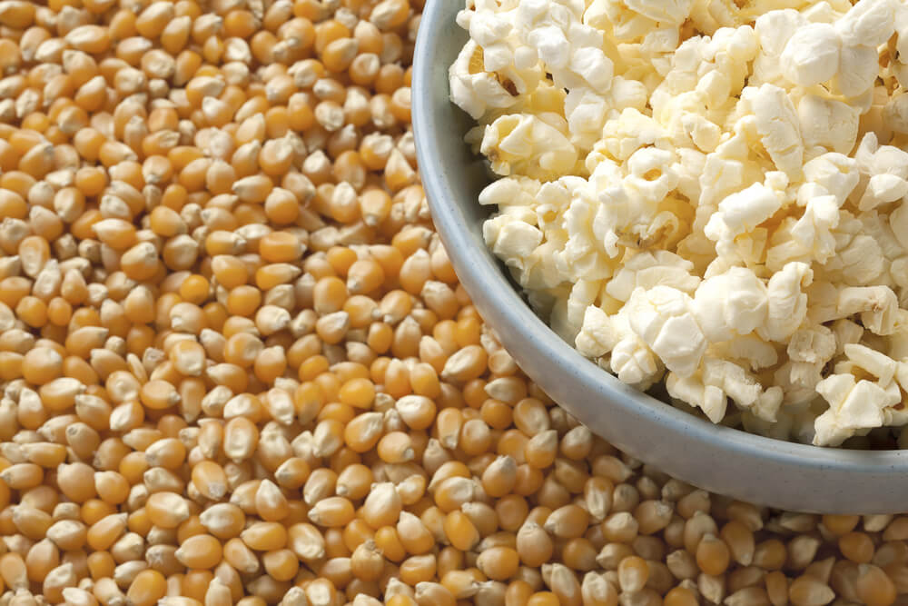 Popcorn surrounded by background of kernels